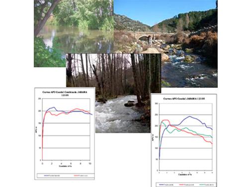 Estimación de caudales ecológicos
