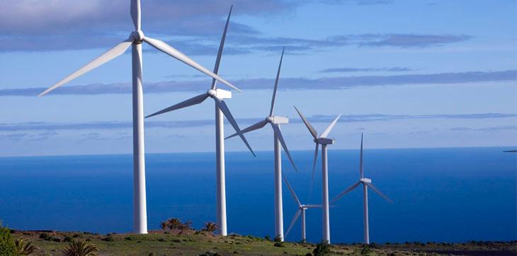 Wind Viability Study
